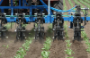 Inter row cultivator with liquid fertilizer application