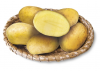 VALMONT variety of potatoes