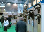 National Gamekeeping Show 2017